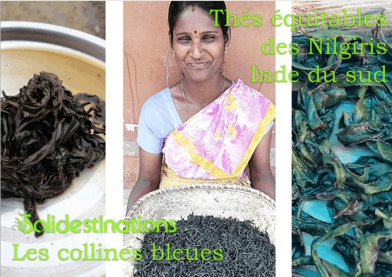 Intervention «Économie sociale et solidaire au cœur plantations thé Inde sud» – SOLIDESTINATIONS