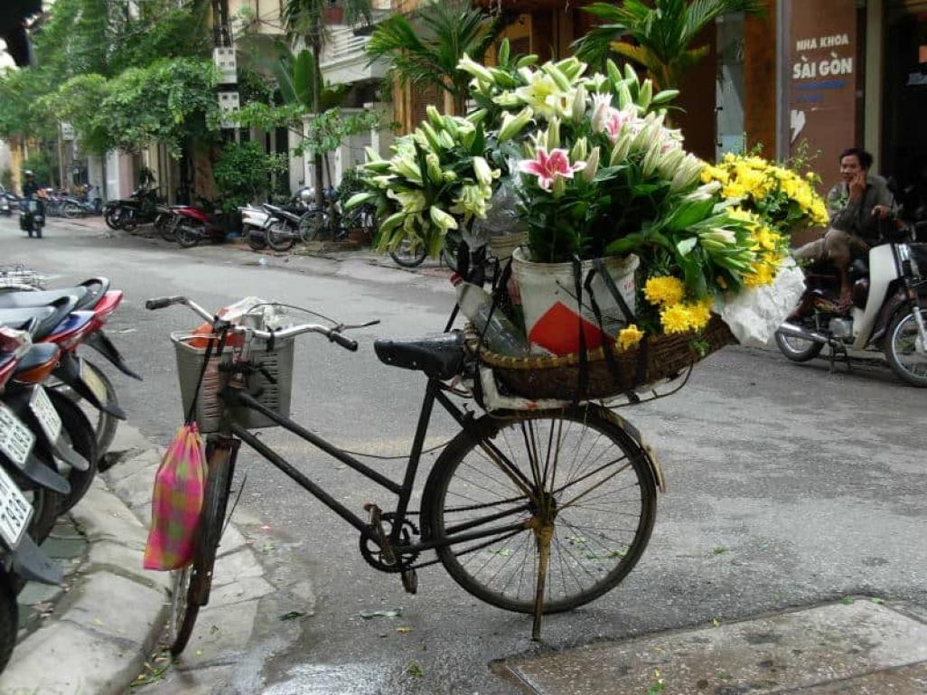Tous nos voyages solidaires et responsables au Viêt Nam